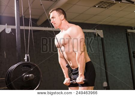 Strong Muscular Bodybuilder Doing Exercise On Bars In The Gym. Part Of Fitness Body. Sports And Fitn