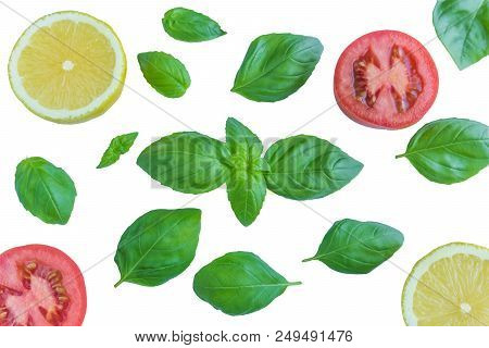 Green Basil Leaves With Lemons And Tomatoes Isolated On A White Background. View From Above To Isola
