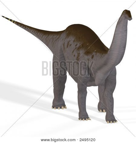 Brontosaurus with clipping path ancient dinosaur over white poster