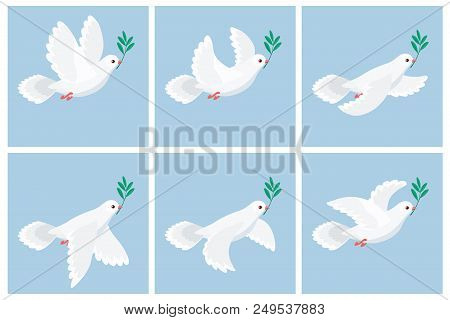 Vector illustration of flying white dove holding olive branch. Sprite sheet with blue frames. Can be used for GIF animation poster