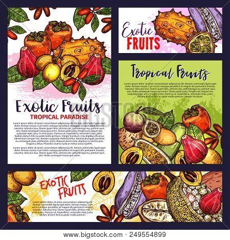 Exotic Fruits Poster Tropical Paradise Sketches Edible Delicatessen Fruits Vector. Brochures Design