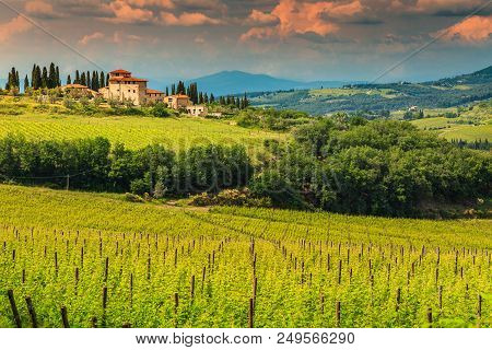 Typical Tuscany Stone House With Spectacular Vineyard In Chianti Region, Tuscany, Italy, Europe