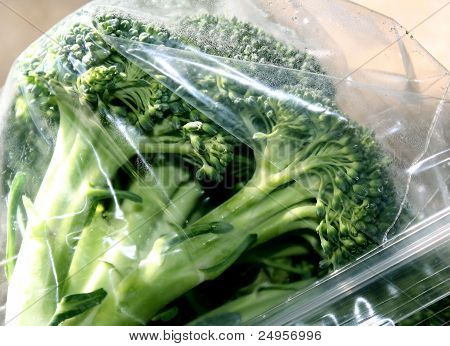 Fresh Broccoli In Storage Bag