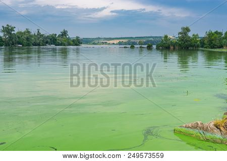 Summer Landscape With Dnipro River Covered With Cyanobacteria At June Cloudy Day Near Dnipro City, U