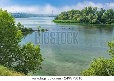 Ukrainian June Landscape With Dnipro River Covered With Cyanobacteria  Near Dnipro City