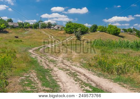 Summer Landscape With Country Road Leading To Peasant Houses In Bashmachka Village, Central Ukraine