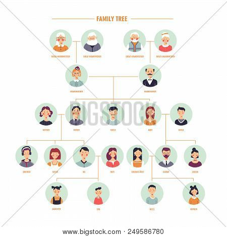 Family Tree Or Genealogy History Vector Template With Relatives Description On Photo Frames For Fami