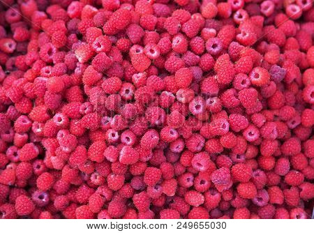 Fresh Red Raspberry Fruits Background.  Top View