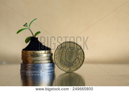 10 Rubles Coins. Russian Money Concept - Coins In Soil With Young Plant