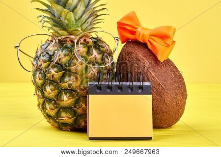 Pineapple, Coconut And Binder Notebook. Tropical Vacation Concept. Time For Planning Vacation. Tips