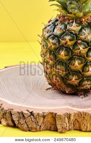 Ripe pineapple on tree stump. Fresh juicy pineapple fruit and copy space. Nutritious exotic fruit. poster