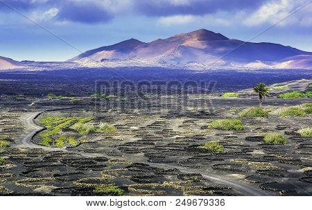 The Wine Valley Of La Geria - Lanzarote, Canary Islands, Spain
