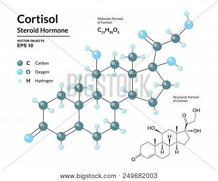 Cortisol. Steroid Hormone. Structural Chemical Molecular Formula And 3D Model Of Stress Hormone. Ato
