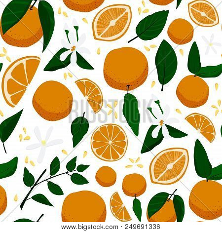 Seamless Pattern With Oranges, Flowers And Leaves. Stock Vector