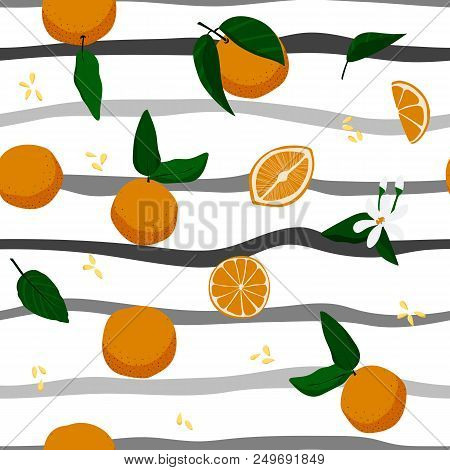 Seamless Oranges And Stripes Hand Drawn Pattern. Stock Vector