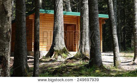 Wooden cottage log cabin chalet hut in conifer forest