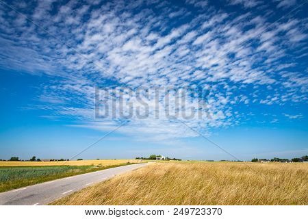 Field Of Yellow Ripe Rye. Picturesque Pastoral Landscape. Stock Photo.