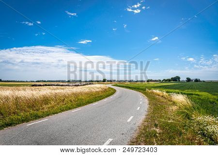 Picturesque Pastoral Landscape. Small Road Between Yellow And Green Wheat Fields. A Stock Photo.