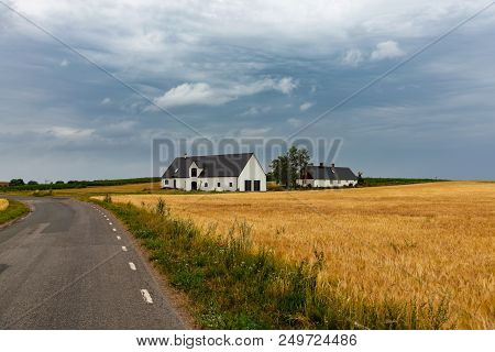 Scandinavian Pastoral Landscape. Small Road Before Yellow Wheat Fields Surrounding A Cosy Sweden Vil