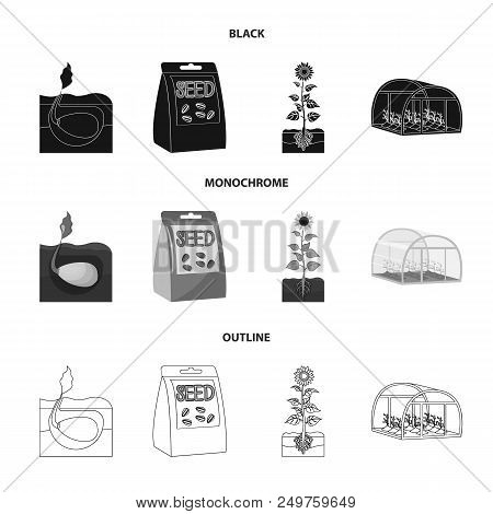 Company, Ecology, And Other  Icon In Black, Monochrome, Outline Style. Husks, Fines, Garden Icons In