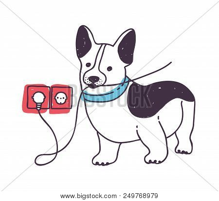 Adorable Dog Gnawing Or Eating Wires. Funny Naughty Puppy Or Doggy Isolated On White Background. Bad