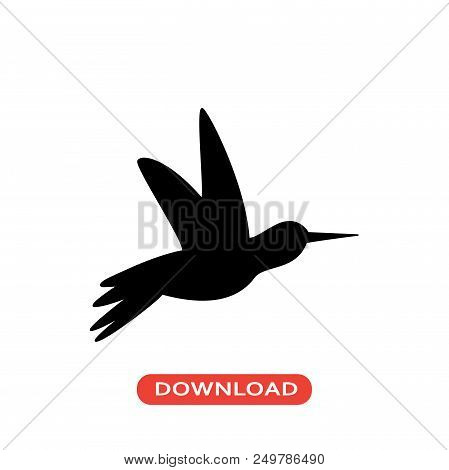 Humming Bird Vector Icon Flat Style Illustration For Web, Mobile, Logo, Application And Graphic Desi