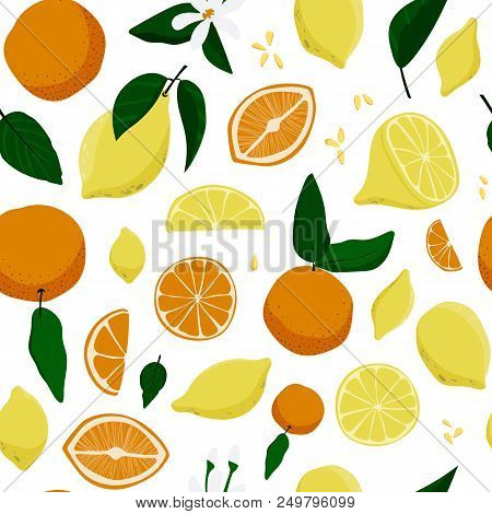 Seamless Lemons And Oranges Hand Drawn Pattern. Stock Vector