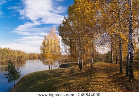 Trees With Yellow Leaves On The Hillside By The River Against A Blue Sky On A Sunny Day. Autumn Land