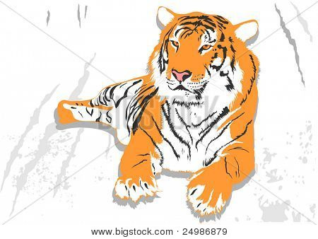 poster of Laying tiger