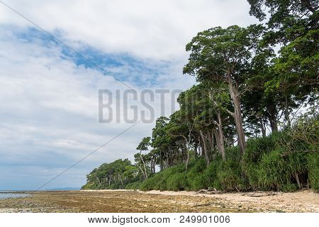 Stunning View Of Neil Island With Trees And Bushes In The Foreground. Neil Island Is A Beautiful Sma
