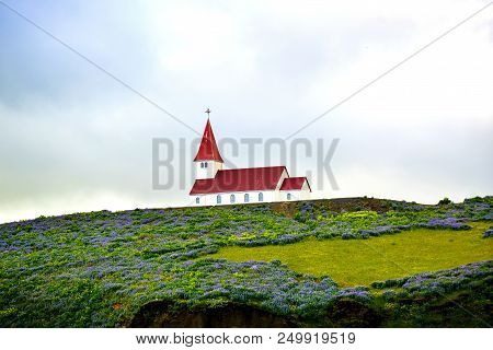 A Red Roofed Church In Iceland With Lupins