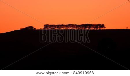 The Silhouette Of A Line Of Trees On An Distant Hillside Against An Orange Sunset Sky