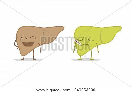 Healthy And Sick Liver Isolated On White Background Vector Illustration