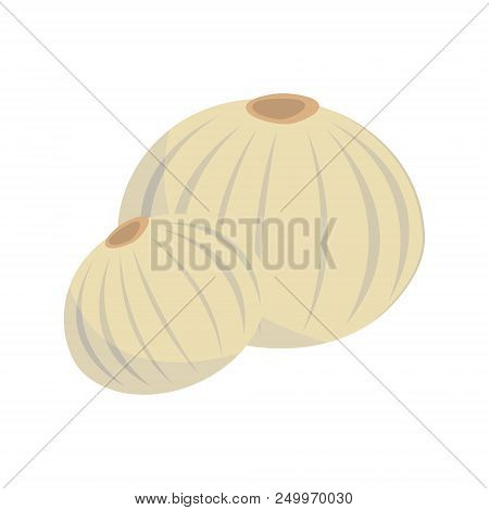 Vector Dehydrated Onion Illustration Isolated In Cartoon Style. Herbs And Species Series