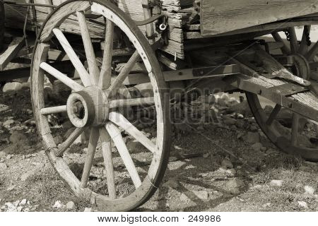Wagon Wheel Sepia