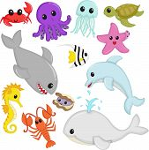 A vector illustration of marine wildlife animals cartoon poster