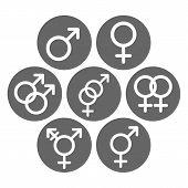 Male, female, heterosexual, bisexual, homosexual, gay, lesbian, hermaphrodite, transgender, transsexual symbols. Gender glyphs. Vector icon. poster