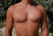 Sunburn on the skin of the chest and abdomen of a man. Exfoliation, skin peels off. Dangerous sun tan. poster