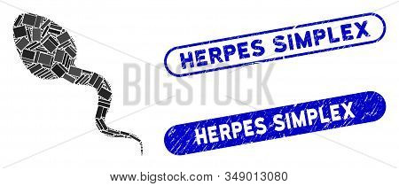 Collage Zoosperm And Corroded Stamp Seals With Herpes Simplex Phrase. Mosaic Vector Zoosperm Is Comp