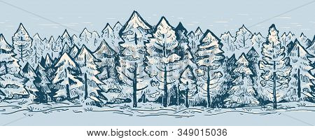 Сoniferous Forest Graphic Seamless Border Vector Sketch Pattern. Hand Drawn Fir Trees In Blue Colors