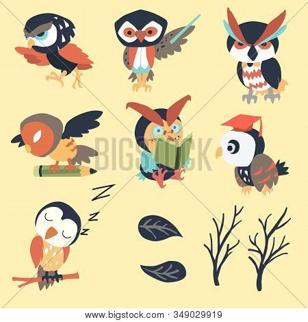 Cute Sage Owl.  Suitable For Use In Children And Education And Halloween