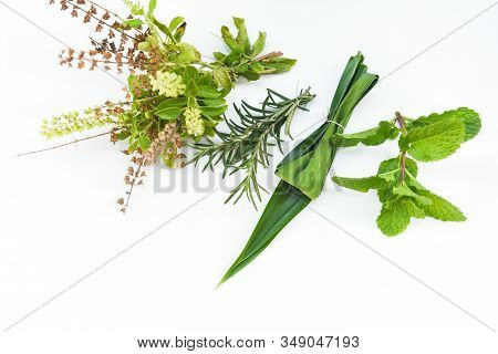 Kitchen Herb Garden Concept / Natural Fresh Herbs And Spice On White  Background In The Kitchen For