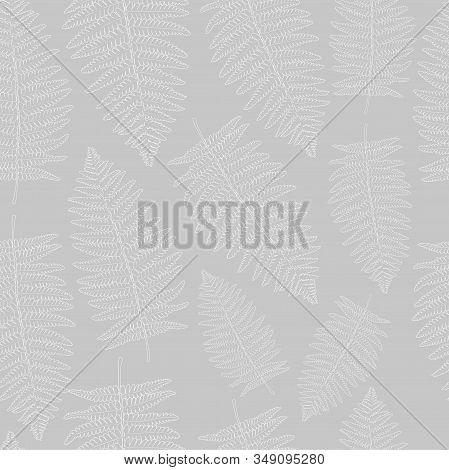 Vector Seamless Pattern With Fern Leaf. Leaves Of The Fern. Pattern For The Fabric. Fern Print. Tren