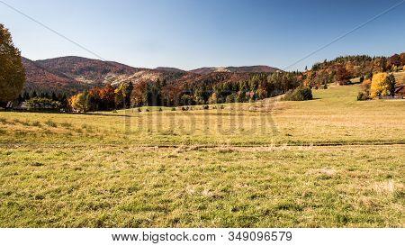 Beautiful Autumn Beskid Zywiecki Mountains Near Przegibek In Poland With Meadow, Colourful Trees, Hi