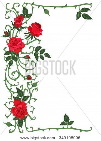 Frame Of Thorns And Red Roses Isolated On A White Background. Vector Image.