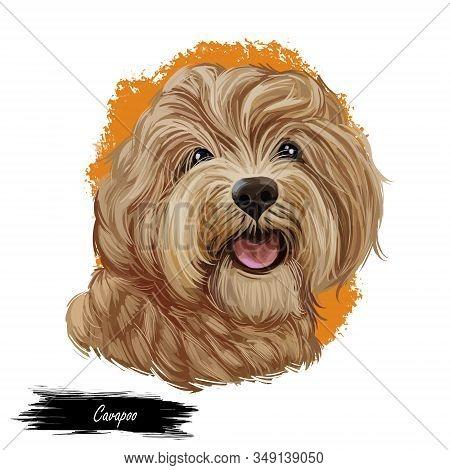 Cavapoo Digital Art Illustration Of Cute Canine Animal Of Beige Color. Cavoodle Or Crossbreed Dog, O