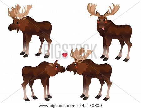 Cute Cartoon Moose Vector Set. Moose In Different Postures. Funny Moose Putting Out His Tongue, Two