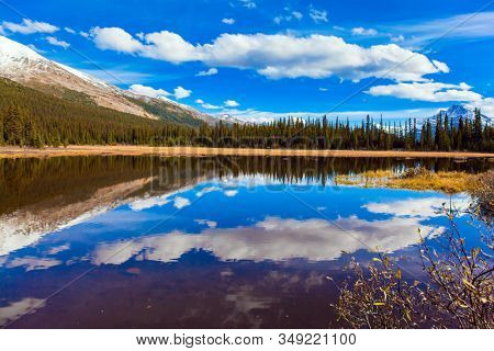 Shallow bog overgrown with yellowed grass at the foot of Lake Peyto. Light clouds reflected in the smooth water of the lake. Autumn trip to the Rockies. The concept of active and photo tourism