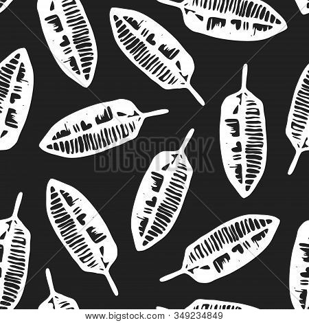 Contrast Vector Black And White Seamless Pattern With Hand Drawn Ink Tropical Banana Leaves. Monochr