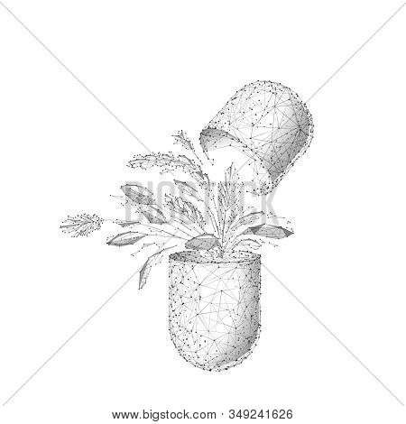 Herbal Medicine Low Poly Wireframe Vector Illustration. Polygonal Capsule With Plant Leaves Isolated